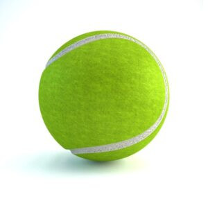 Adults, Pets, Kids Toy Training Tennis Ball